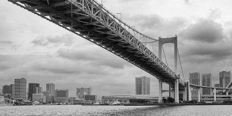 El puente entre la tecnologia y el consumidor